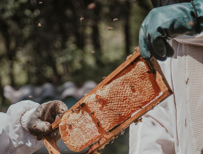 Včelařský plášť k ochraně před včelím bodnutím